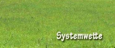 Systemwette
