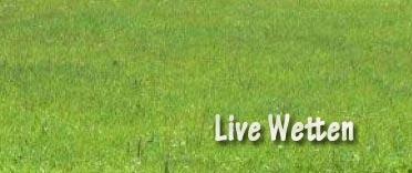 live wetten abgeben